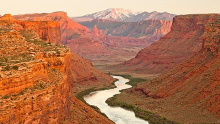 Colorado River Rafting Trips