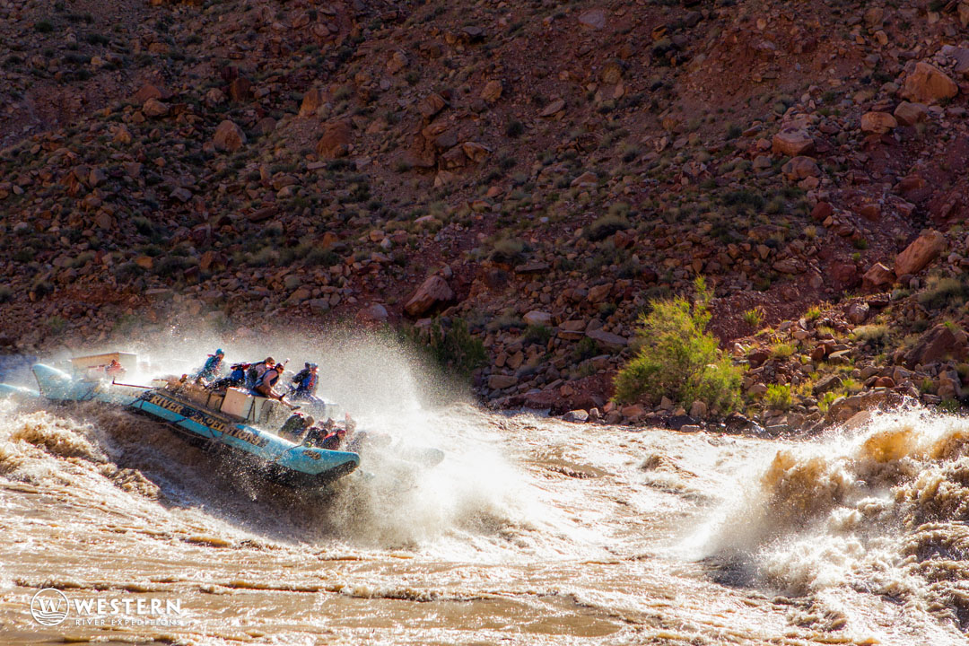 Big water in Cataract Canyon