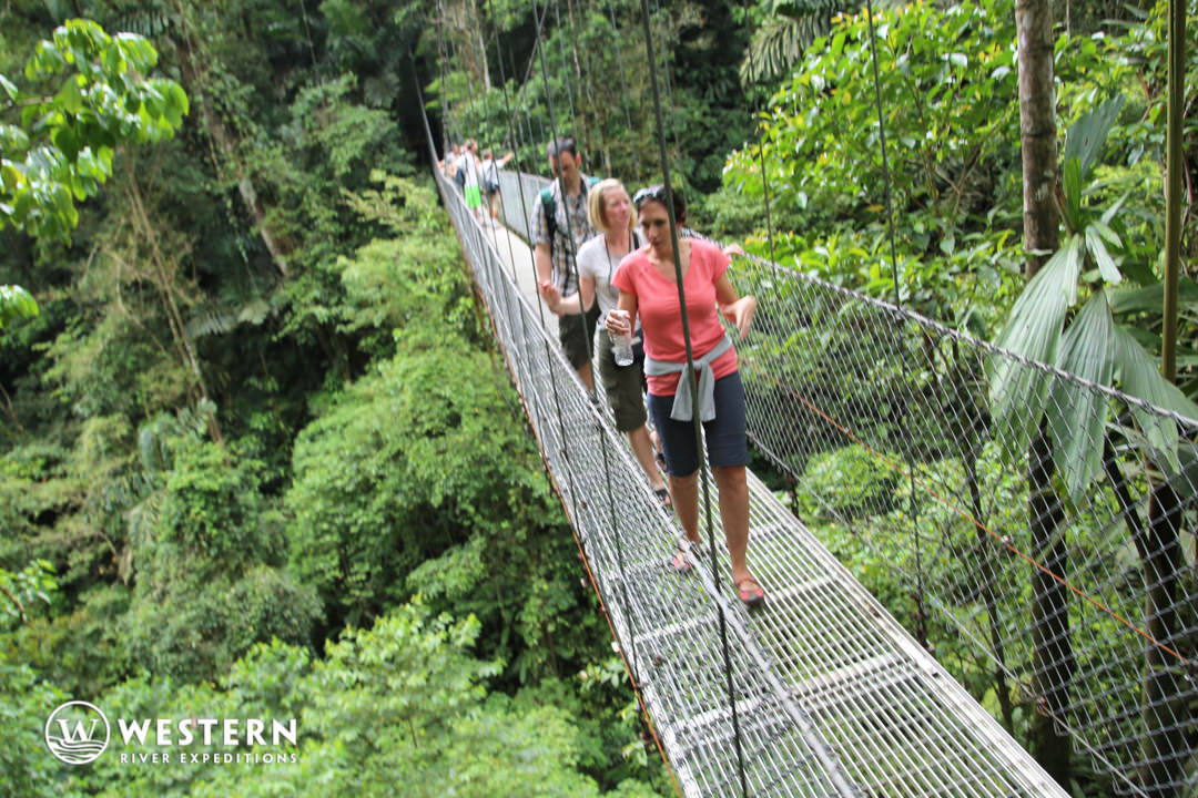 Costa Rica Vacation Package Bridge 2
