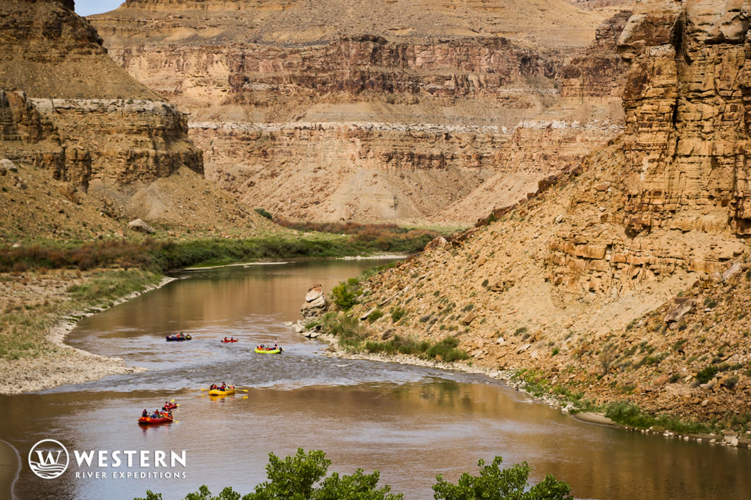 Desolation Canyon Utah Rafting Nefertiti Flotilla