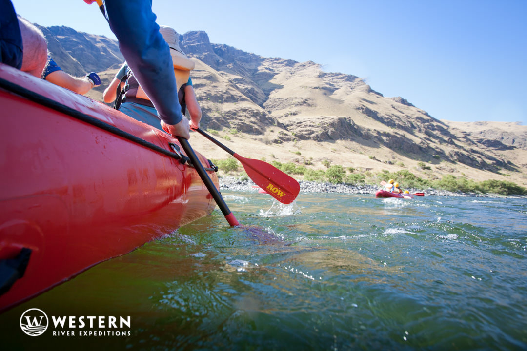 Paddling on Snake River