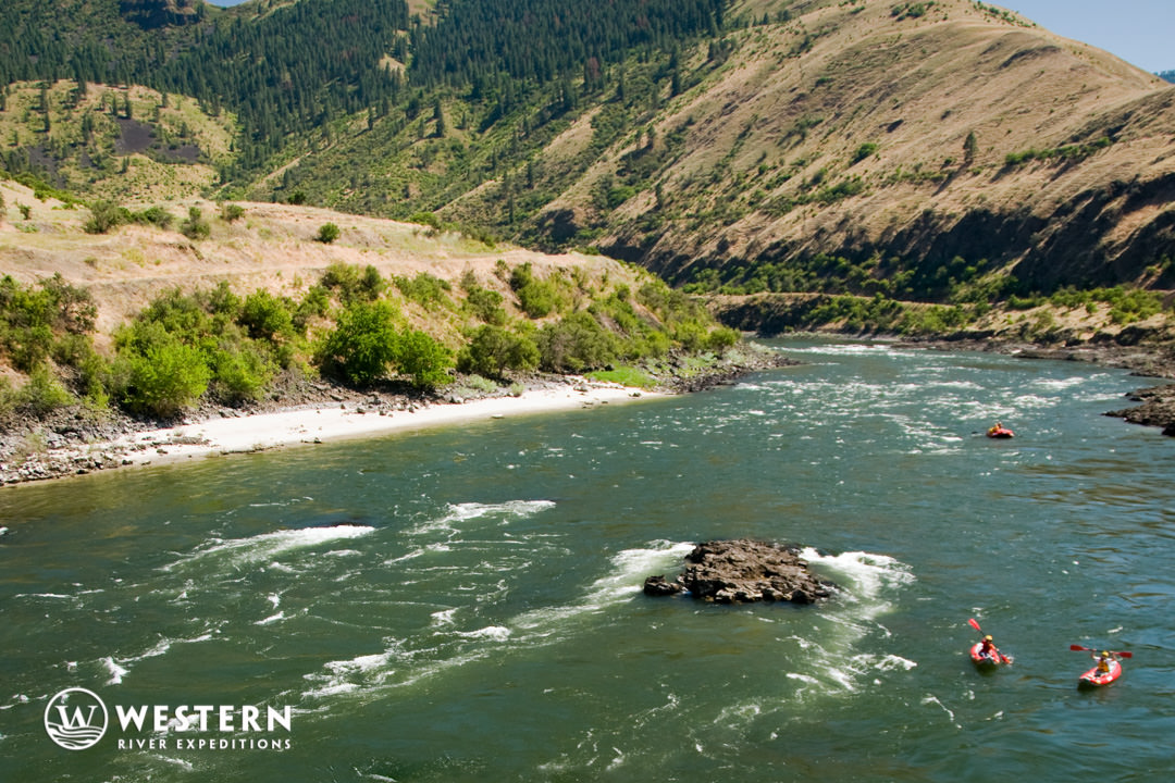 The lower Salmon River rolls on
