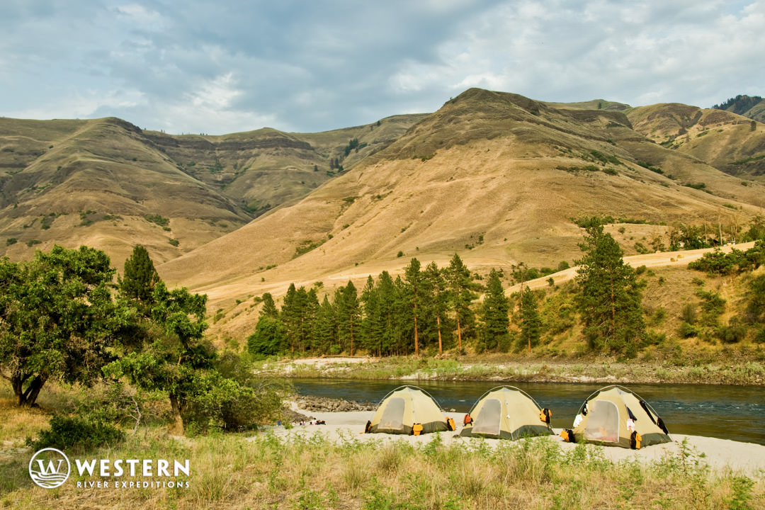 Tents for camping on the lower Salmon River