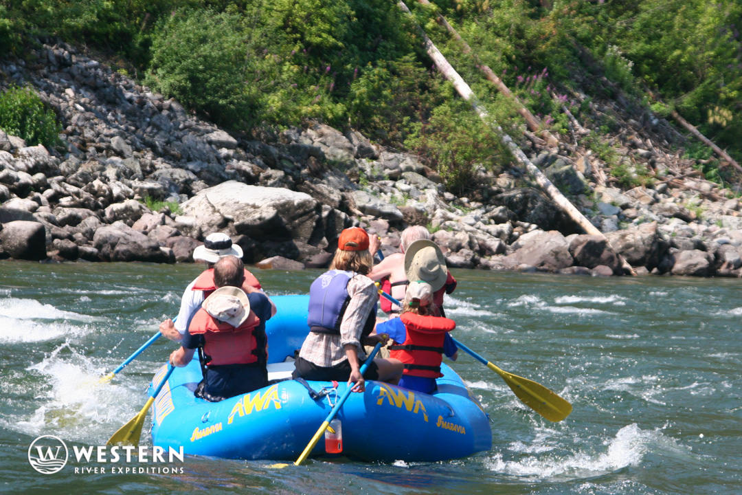 Paddle raft on the on the Main Salmon River
