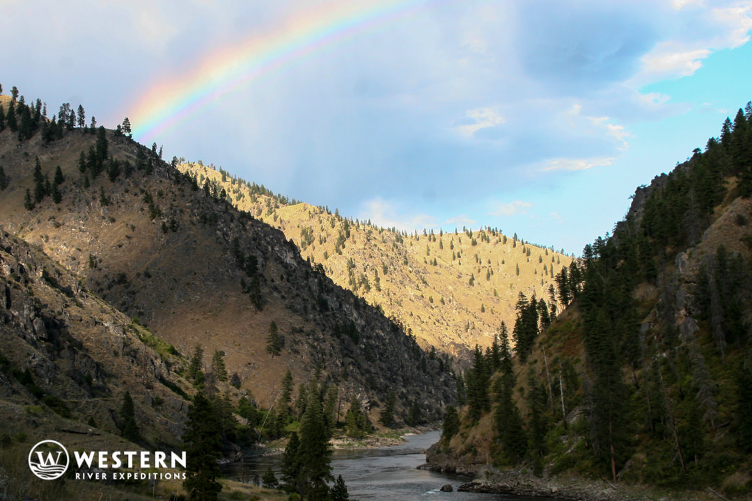 Rainbow on the on the Main Salmon River