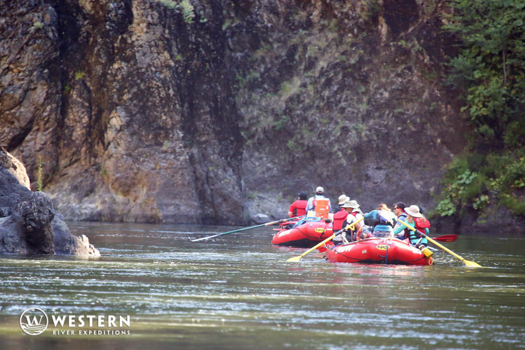 Rogue River Rafting Peaceful
