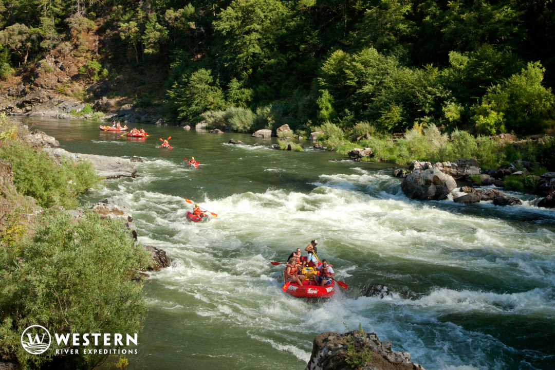 Rogue River Rafting Whitewater Flotilla