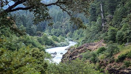 Rogue River Marial Lodge Hike